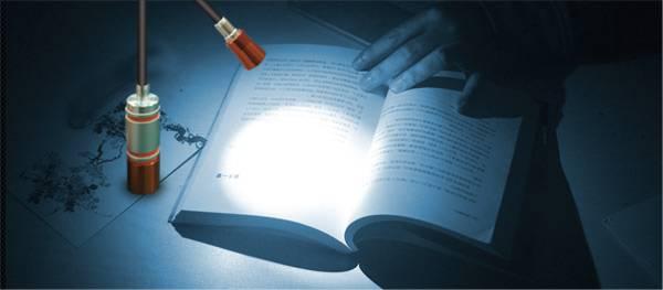 LED Flexible Snake Light Flashlight
